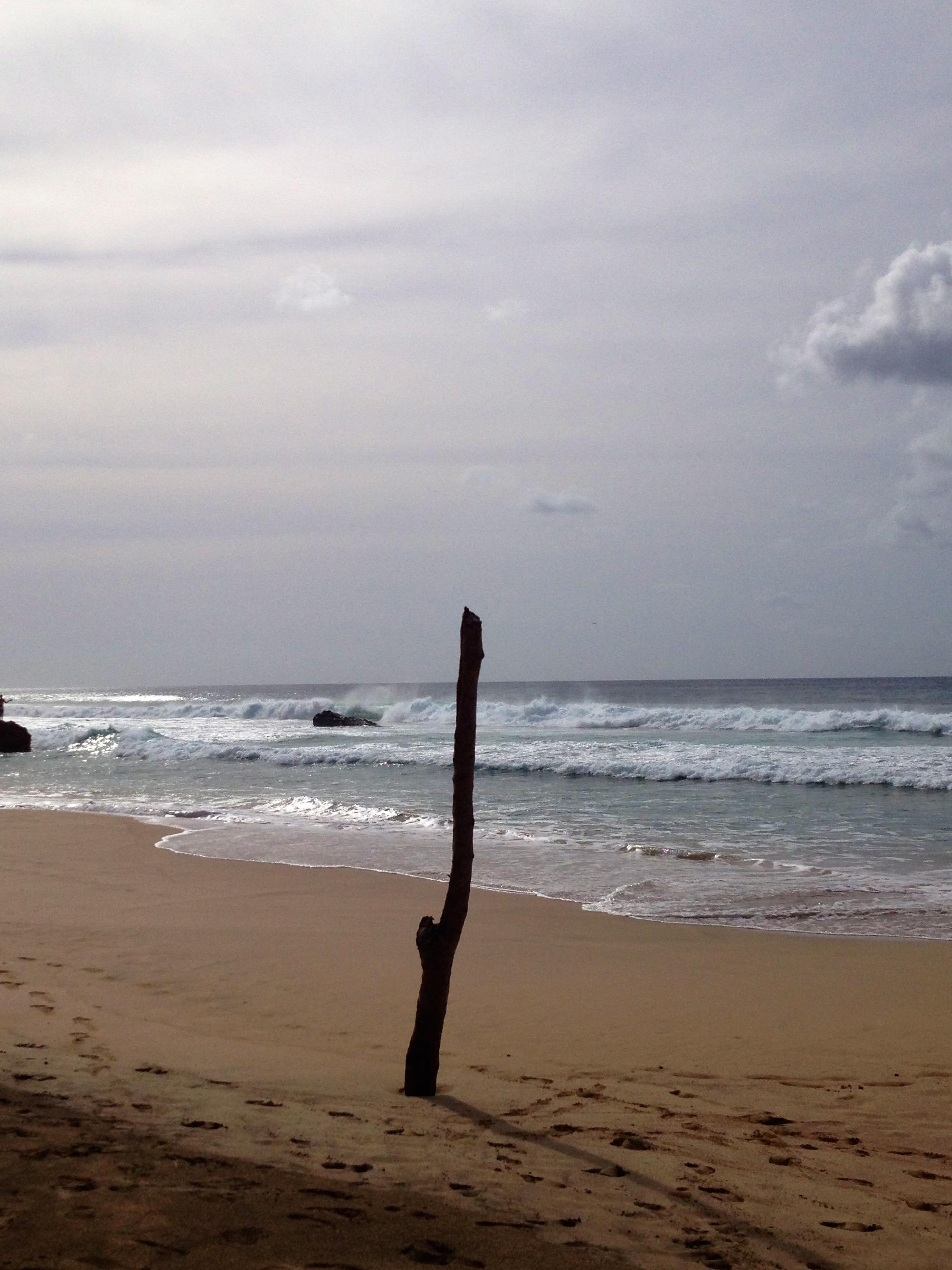 Legni di mare fondazione erri de luca for Legni di mare arredamento